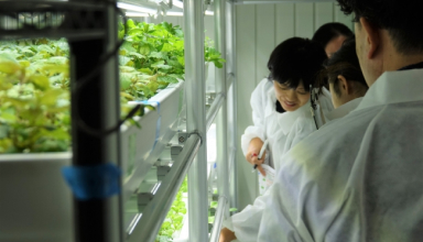 【講義実施】多様な農福連携に貢献できる人材育成プログラム@千葉大学環境健康フィールド科学センター